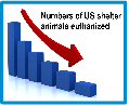 45% reduction in euthanasia numbers of shelter animals over five years