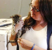 Kitten TNR