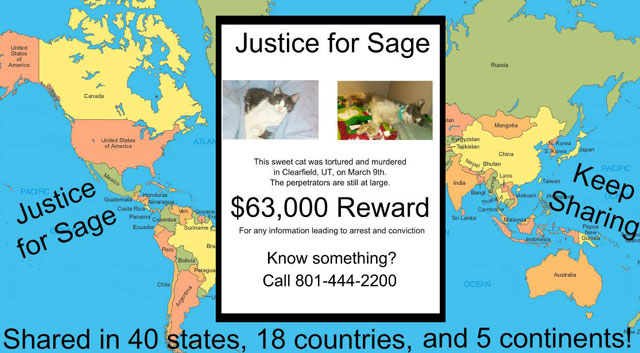 Justice for Sage (is not forthcoming)