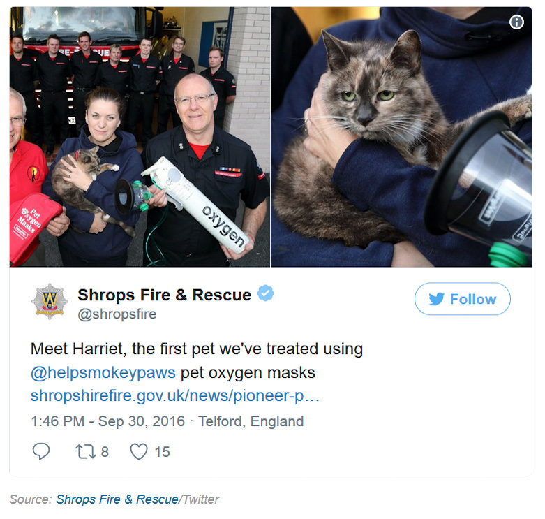 Mini oxygen mask helps save cat from house fire