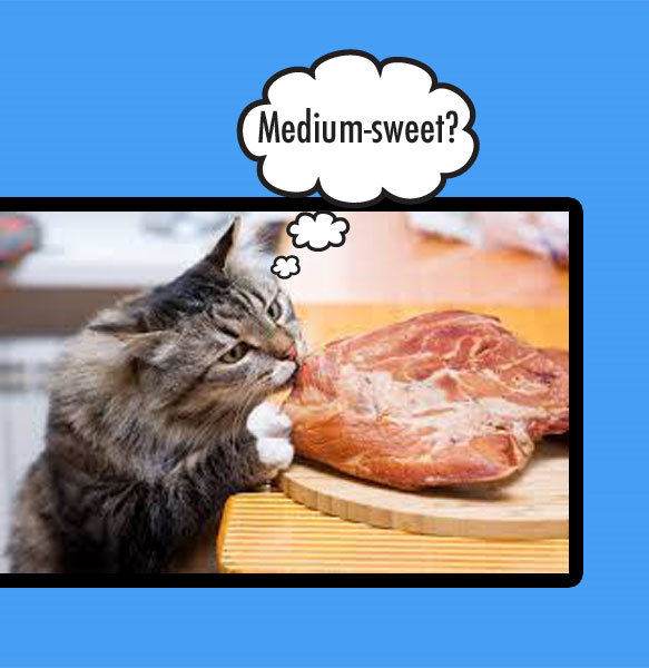 Cats can taste the bitterness or sweetness in meat