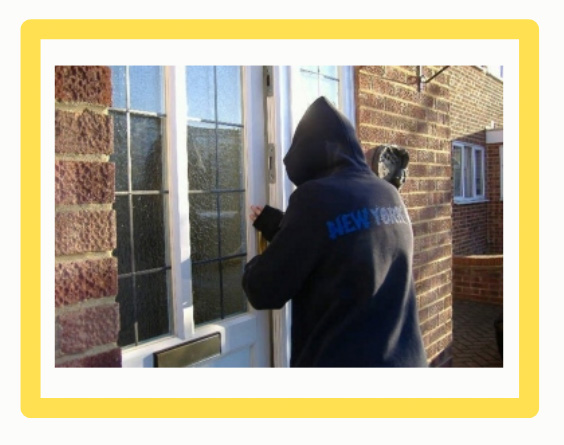 Burglar used cat story