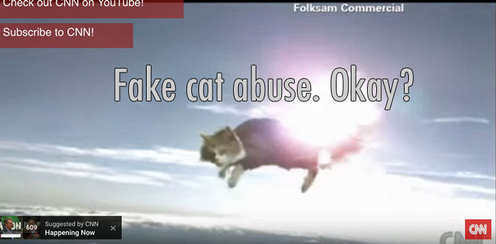 Fake cat abuse. Is it okay?