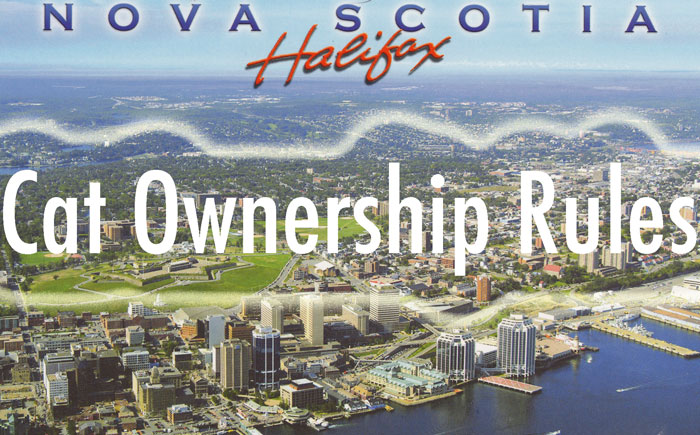 Cat ownership rules of Halifax Nova Scotia