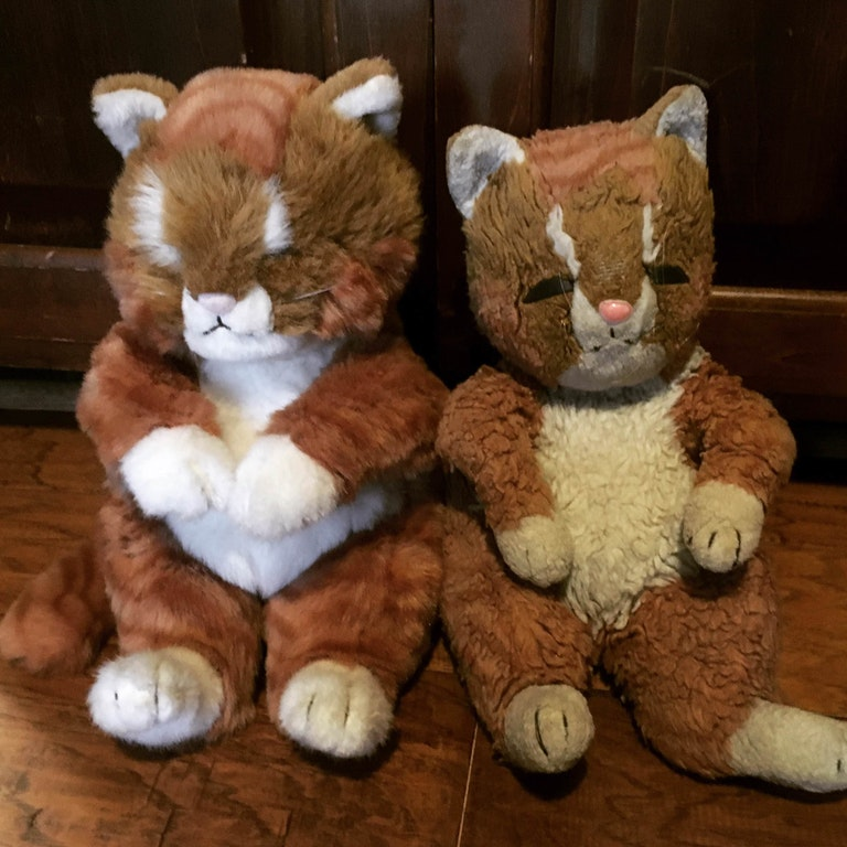 Two plush toy cats one old and one new