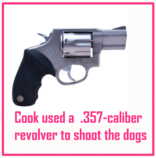 Cook shot the dogs with a .357 revolver