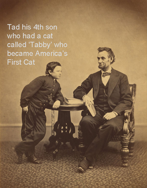 Did Abraham Lincoln Have Any Pets?
