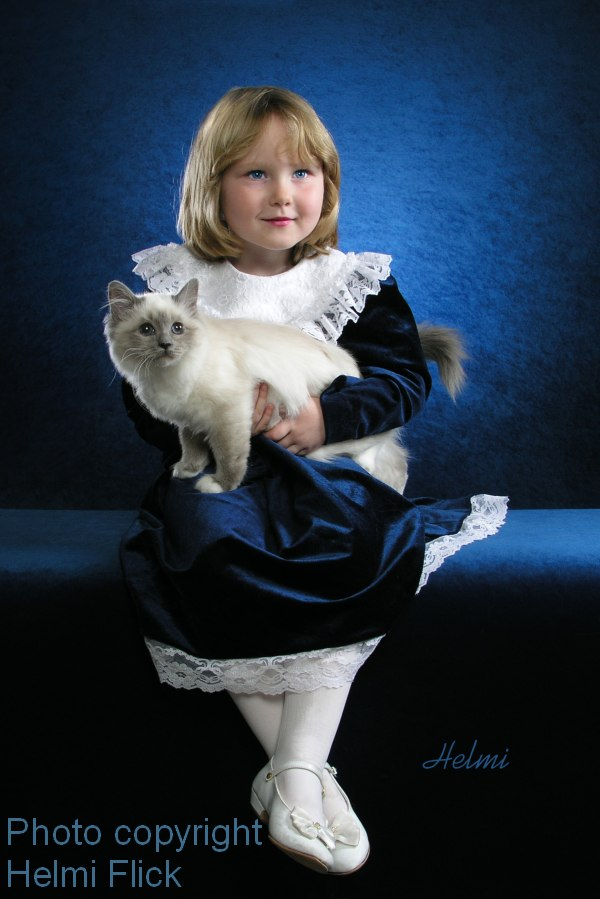 Birman cat and charming young girl Jessica