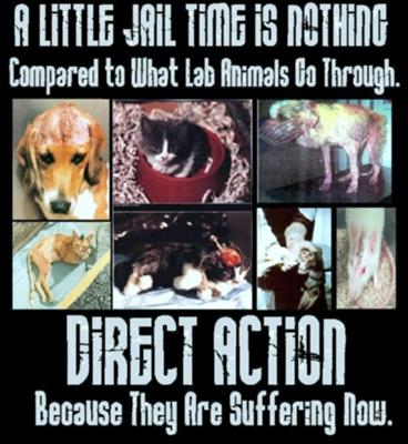 Animal testing IS animal abuse!