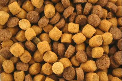cat food recipe pictures of cats cat food 425x283