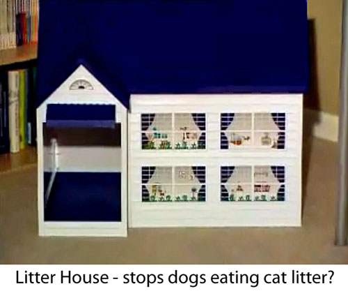 dog eating cat litter - cat litter house