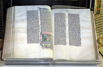 The Bible is devoid of reference to the domestic cat - photo Arpingstone (Wikimedia Commons)