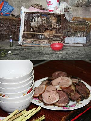 Dog Meat on the Table and Cat Meat in the Cage - Vietnam - by `◄ccdoh1►