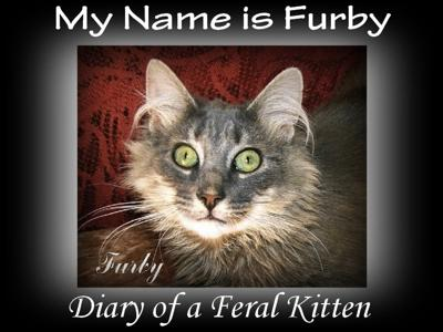 Furby's New E-Book