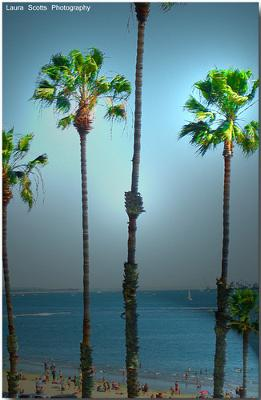 Long Beach Calif - photo by laura scott photography (Flickr)