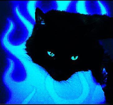 I did a lil photo editing  (I like flame designs) - Freddy my cat.