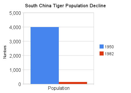chart showing the decline in the South China tiger population from 1950 to 1982