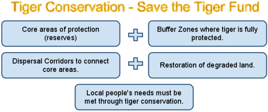 save the tiger fund strategy for saving the tiger