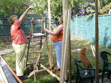 Building a cat enclosure or cat run