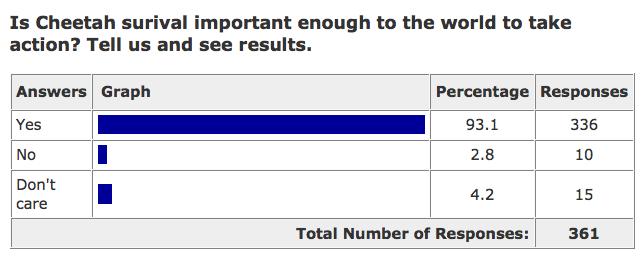 endangered cheetah poll results