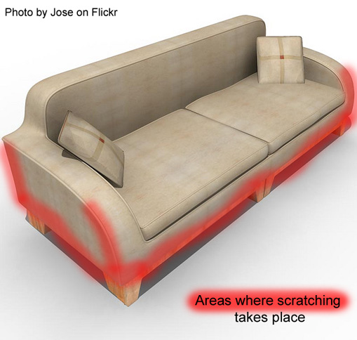Sofa designed for cat scratching - Front