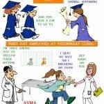 veterinarian's oath poster