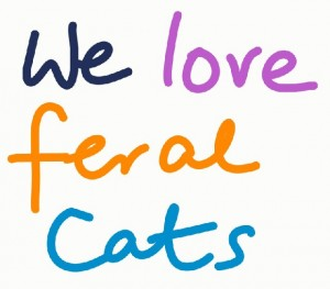 we love feral cats