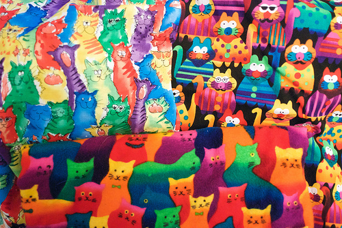 Cat hoarding - lots of cats!