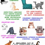 Complications of declawing