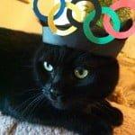 Olympics Cat