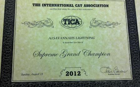 "Certificate of award of Supreme Grand Champion to A1 Savannahs ""Lightning"""