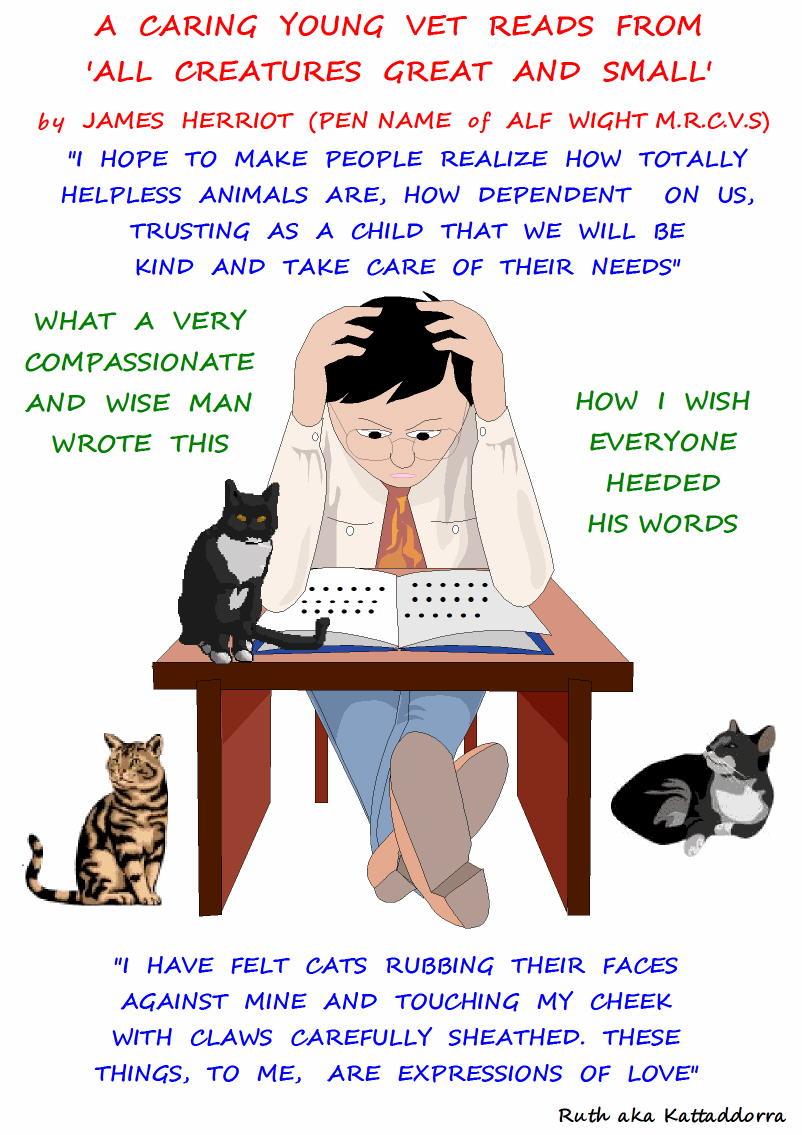 caring veterinarian
