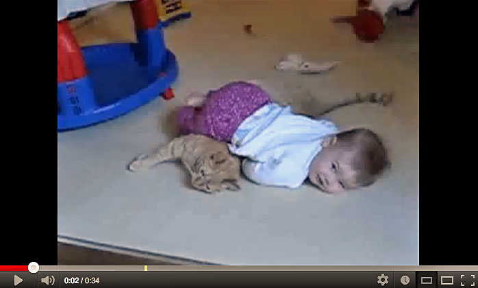 Baby Girl On Top Of Cat