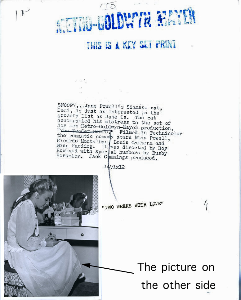 Jane Powell and Siamese Cat Photograph