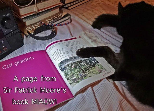 Sir Patrick's book Miaow!