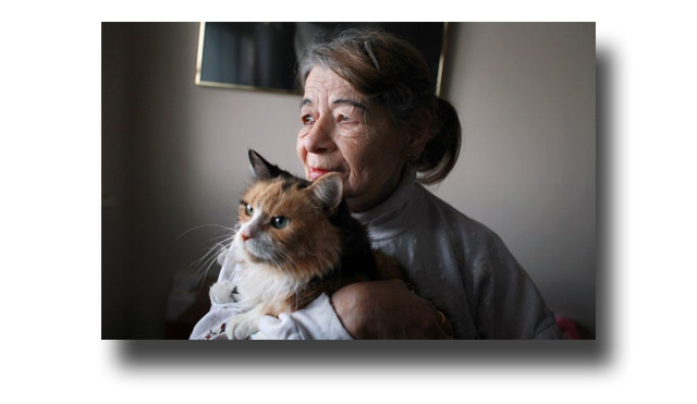 Elderly Lady and Faithful Cat Companion