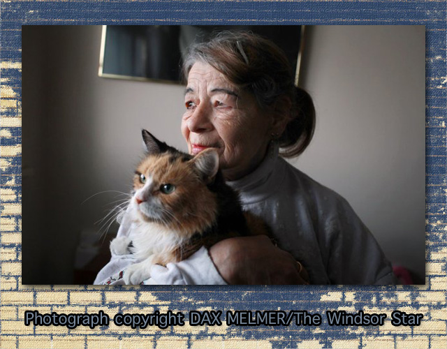 Elderly Lady and Loyal Cat