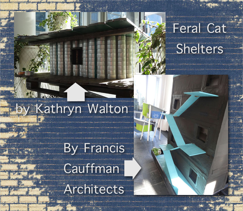 Feral cat shelters designed by architects