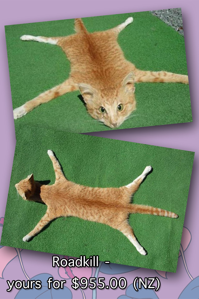 Domestic cat skin rug