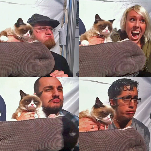 Grumpy cat with customers photo shoot