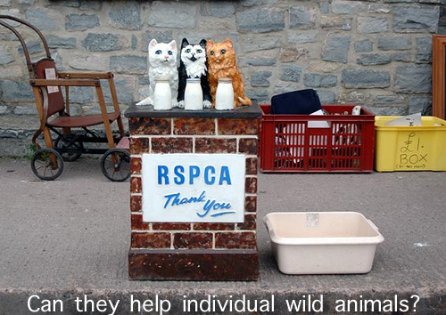 RSPCA can't help me