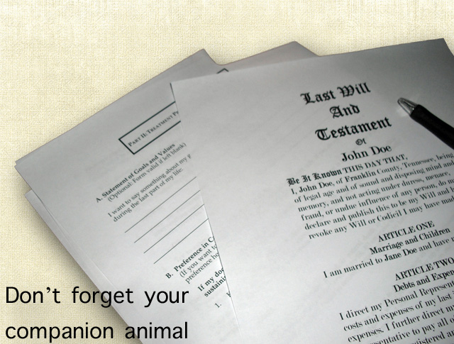 Putting your cat in your last will and testament
