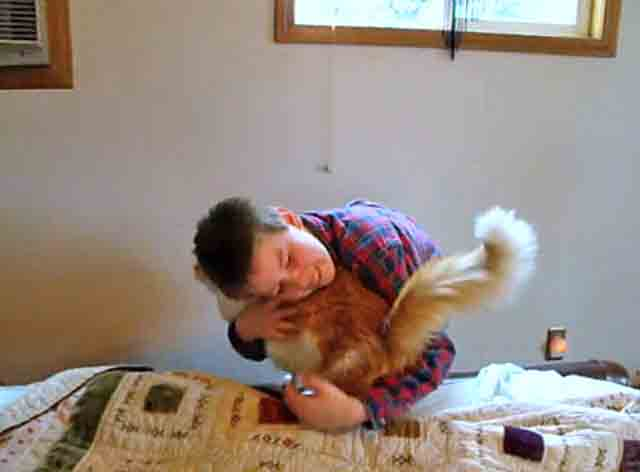 Boy reunited with cat