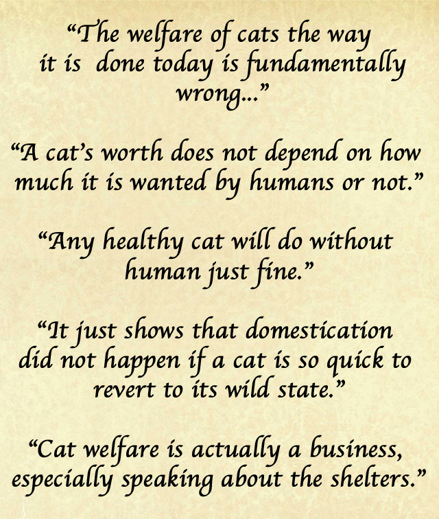 Cat Welfare is Fundamentally Wrong