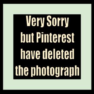 pinterest-notice-x