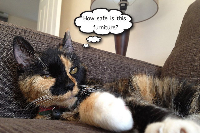 Safe furniture for cats