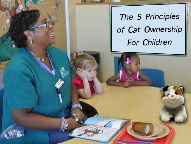 Teaching kids the principles of cat ownership