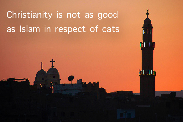 Christianity and cats