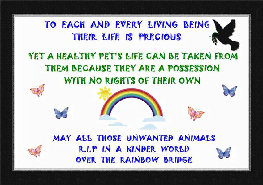 Animal life is precious