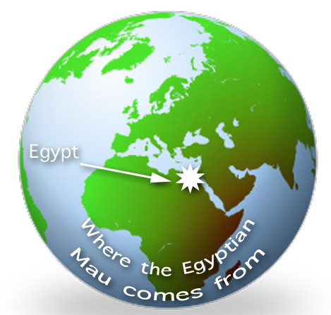 Egyptian Mau Origins Map